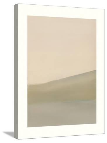 South Hill-Sammy Sheler-Stretched Canvas Print