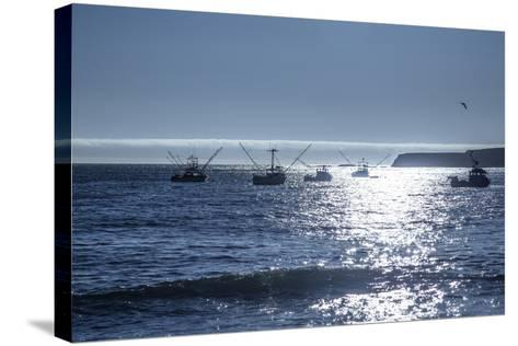 Fishing Boats I-Rita Crane-Stretched Canvas Print