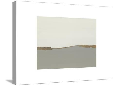 Wind Fence-Sammy Sheler-Stretched Canvas Print