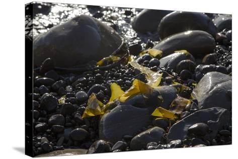 Rocky Shore I-Rita Crane-Stretched Canvas Print