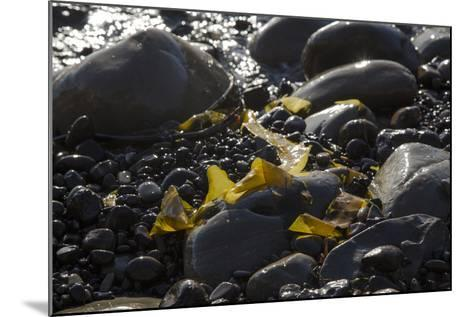 Rocky Shore I-Rita Crane-Mounted Photographic Print