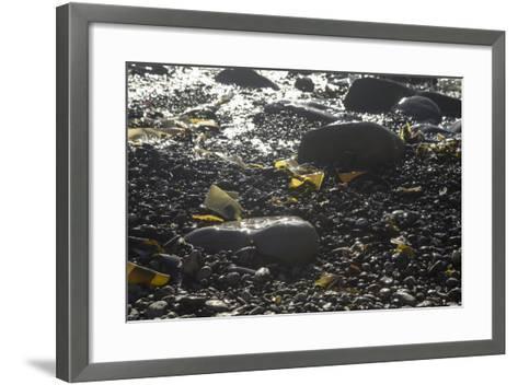 Rocky Shore IV-Rita Crane-Framed Art Print