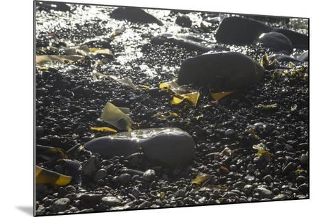 Rocky Shore IV-Rita Crane-Mounted Photographic Print