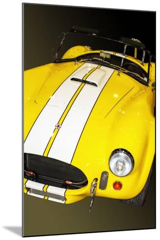 Classic Cobra I-Alan Hausenflock-Mounted Photographic Print