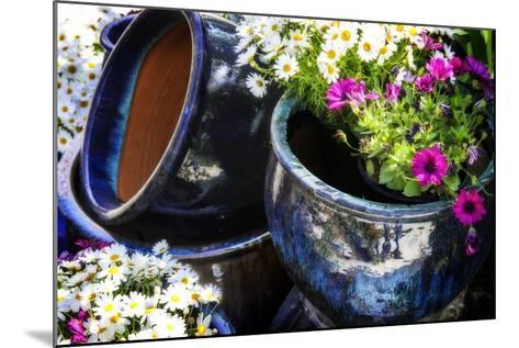 Glazed Flower Pots II-Alan Hausenflock-Mounted Photographic Print