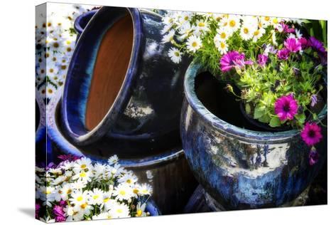 Glazed Flower Pots II-Alan Hausenflock-Stretched Canvas Print