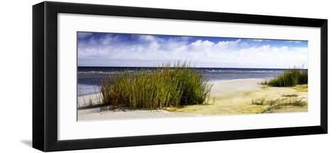 Cedar Island Bay II-Alan Hausenflock-Framed Art Print