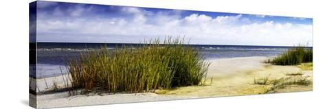 Cedar Island Bay II-Alan Hausenflock-Stretched Canvas Print