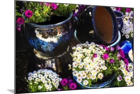 Glazed Flower Pots I-Alan Hausenflock-Mounted Photographic Print