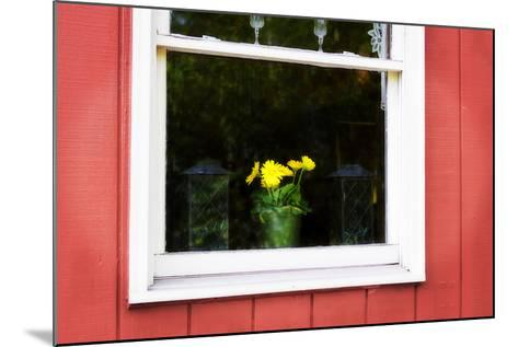 Flowers in a Window I-Alan Hausenflock-Mounted Photographic Print
