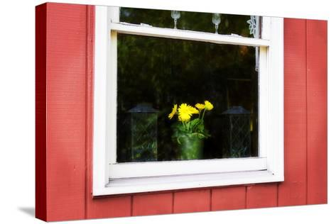 Flowers in a Window I-Alan Hausenflock-Stretched Canvas Print