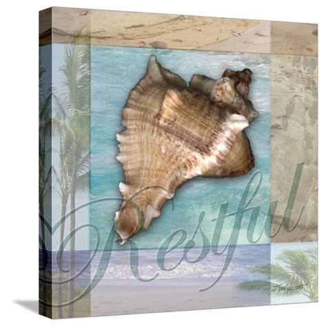 Restful Shell-Todd Williams-Stretched Canvas Print