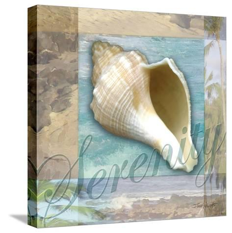 Serenity Shell-Todd Williams-Stretched Canvas Print