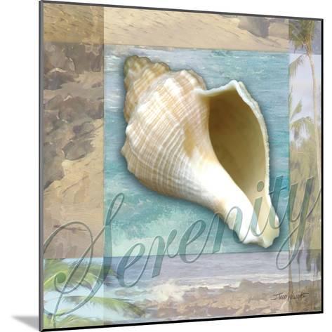 Serenity Shell-Todd Williams-Mounted Art Print