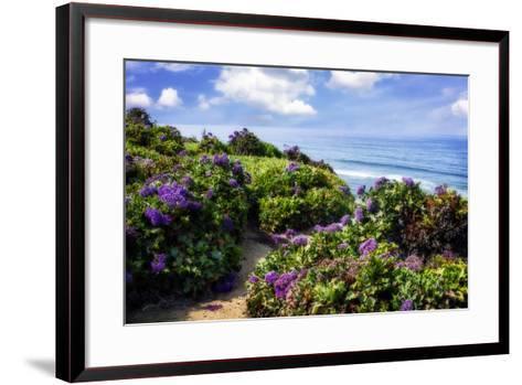 Del Mar II-Alan Hausenflock-Framed Art Print