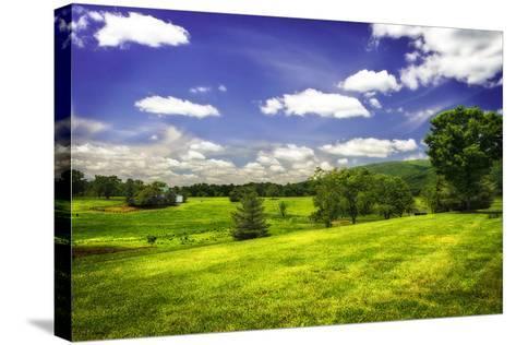Virginia Foothills II-Alan Hausenflock-Stretched Canvas Print