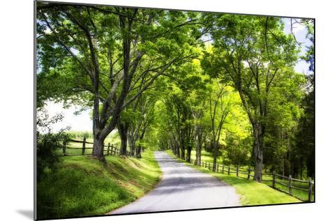 Virginia Byways IV-Alan Hausenflock-Mounted Photographic Print