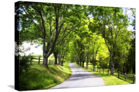 Virginia Byways IV-Alan Hausenflock-Stretched Canvas Print