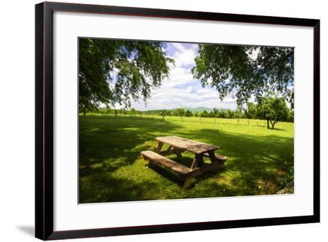 Country Springtime I-Alan Hausenflock-Framed Art Print