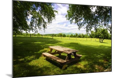 Country Springtime I-Alan Hausenflock-Mounted Photographic Print