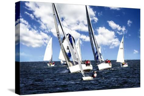 A Perfect Sail I-Alan Hausenflock-Stretched Canvas Print