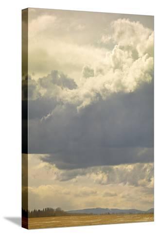 Alberta Sky-Roberta Murray-Stretched Canvas Print