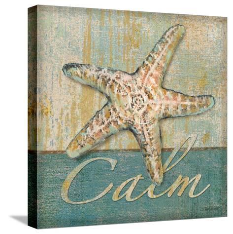 Calm-Todd Williams-Stretched Canvas Print