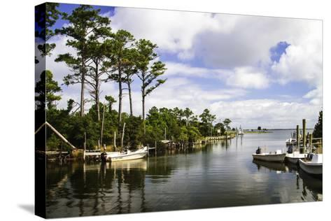 Small Harbor-Alan Hausenflock-Stretched Canvas Print