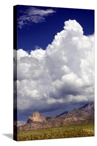 Gathering Summer Storm-Douglas Taylor-Stretched Canvas Print