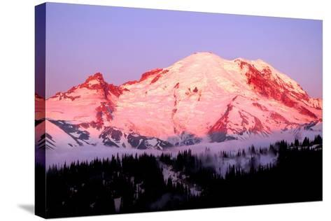 Sunrise at Mount Rainier-Douglas Taylor-Stretched Canvas Print