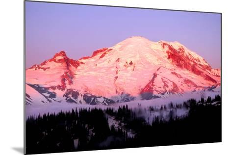 Sunrise at Mount Rainier-Douglas Taylor-Mounted Photographic Print