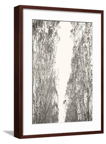 Trees III-Karyn Millet-Framed Art Print