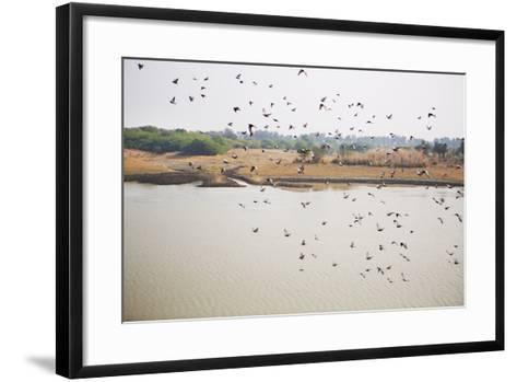 Birds I-Karyn Millet-Framed Art Print