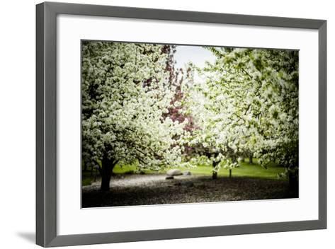 Crabapple in Spring I-Beth Wold-Framed Art Print