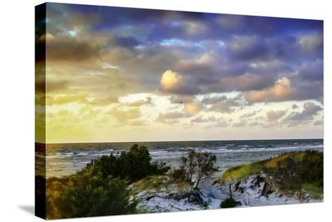 North Bay Sunrise II-Alan Hausenflock-Stretched Canvas Print