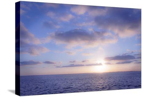 Pink Sunset-Alan Hausenflock-Stretched Canvas Print