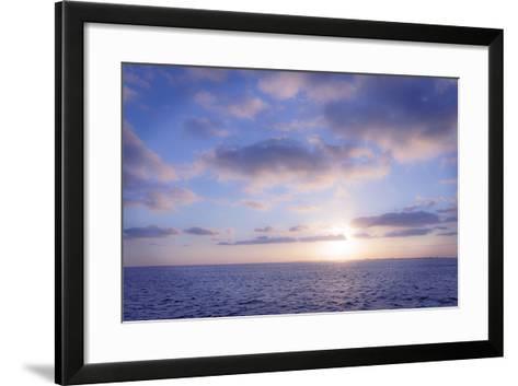 Pink Sunset-Alan Hausenflock-Framed Art Print