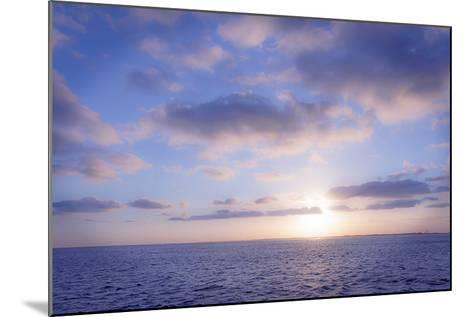 Pink Sunset-Alan Hausenflock-Mounted Photographic Print