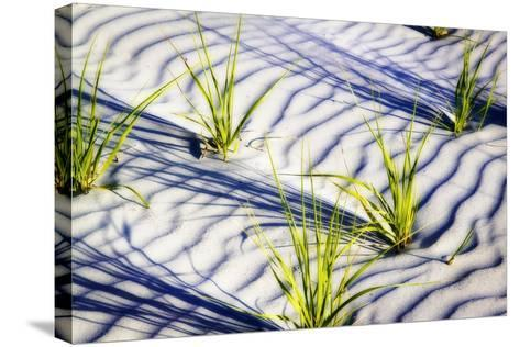 Waves of Sand II-Alan Hausenflock-Stretched Canvas Print