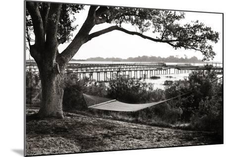 Summer Hammock I-Alan Hausenflock-Mounted Photographic Print