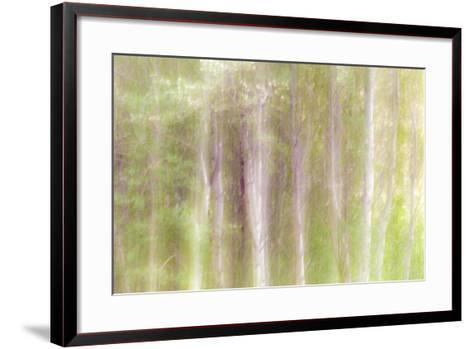 Aspen Blur III-Kathy Mahan-Framed Art Print