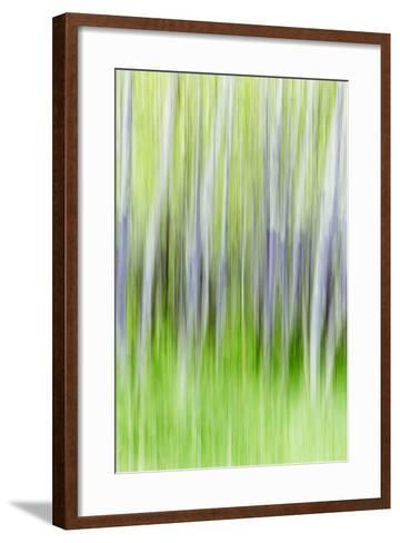 Yakima River Trail I-Kathy Mahan-Framed Art Print