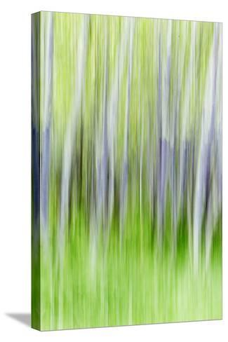 Yakima River Trail I-Kathy Mahan-Stretched Canvas Print