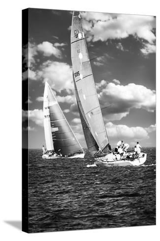 Coming and Going BW-Alan Hausenflock-Stretched Canvas Print