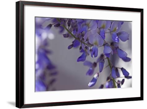 Delicate Wisteria I-Rita Crane-Framed Art Print