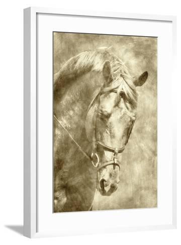 Diego I-Alan Hausenflock-Framed Art Print