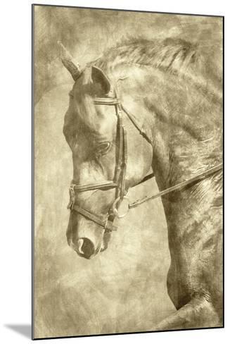 Diego II-Alan Hausenflock-Mounted Art Print