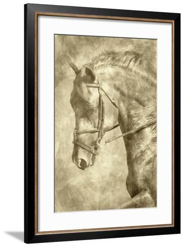 Diego II-Alan Hausenflock-Framed Art Print
