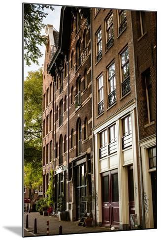 Amsterdam Neighborhood II-Erin Berzel-Mounted Photographic Print