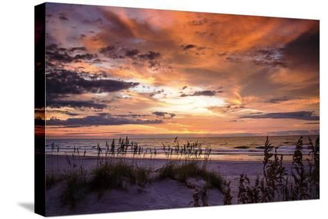 September Sunrise IV-Alan Hausenflock-Stretched Canvas Print